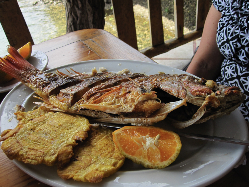 Panamanian Fried Red Snapper with patacones and fruit on a plate on wooden table