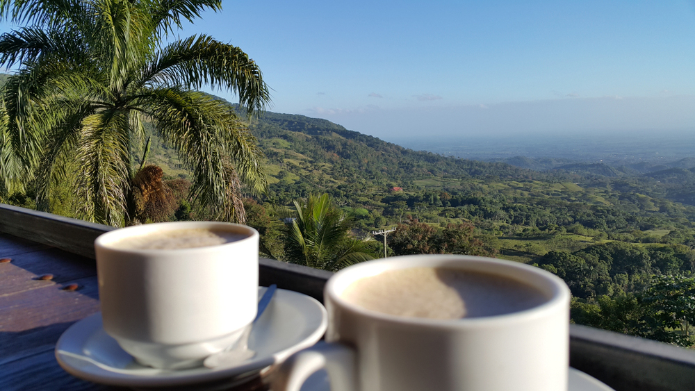 Two cups of Dominican coffee overlooking Dominican countryside
