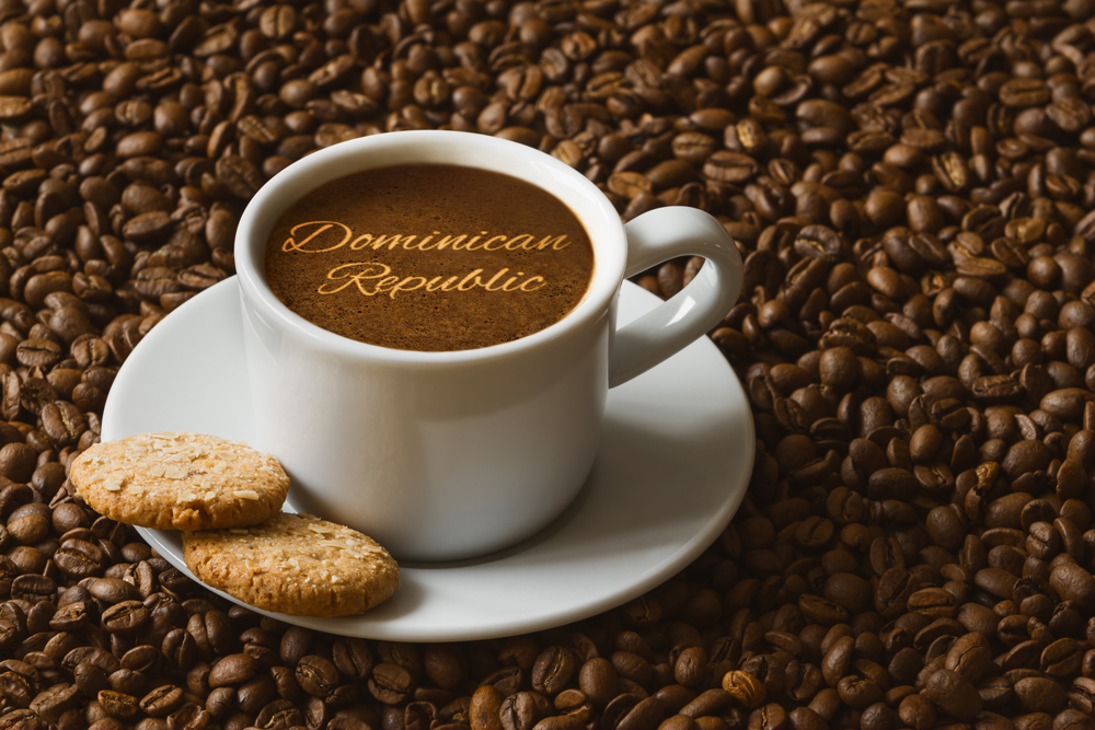 Dominican Coffee Cup On Coffee Beans