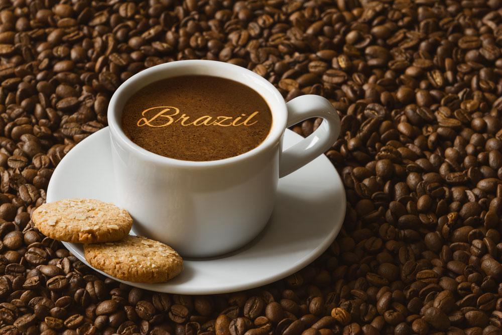 Brazilian coffee cup sitting on top of Brazilian coffee beans
