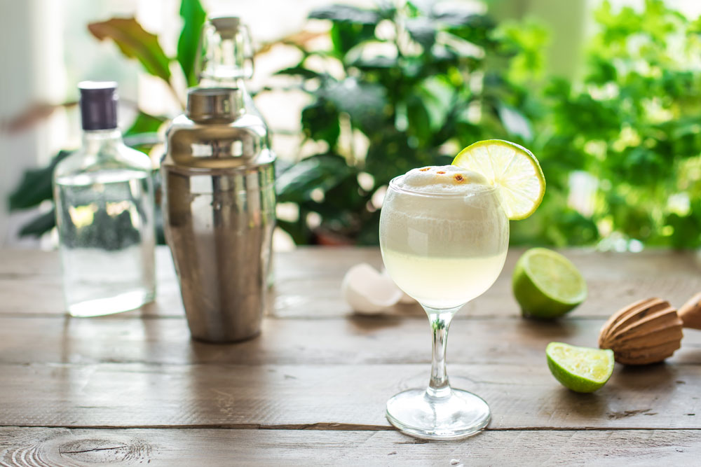 Pisco Sour Cocktail with shaker and ingredients