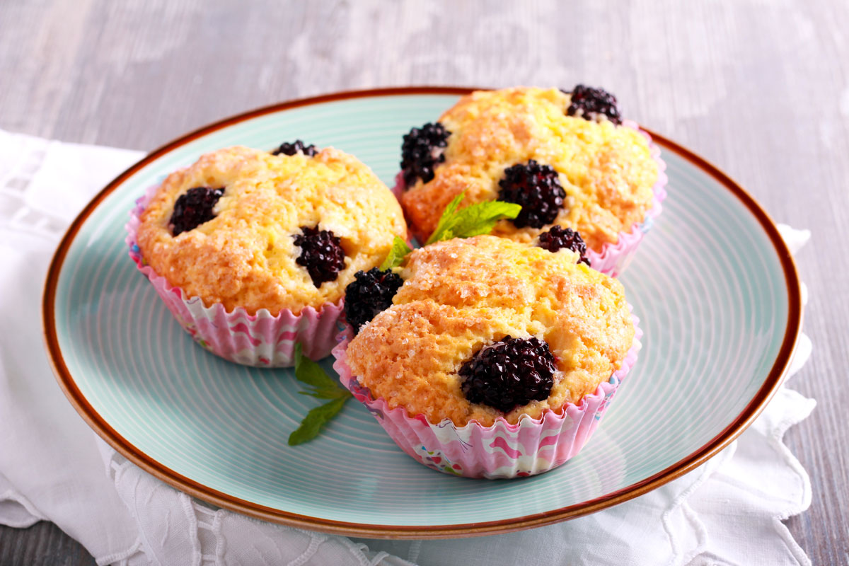 Blueberry Muffins in a cupcake foils